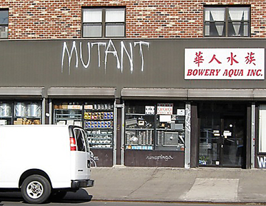 mutant at bowery and delancy